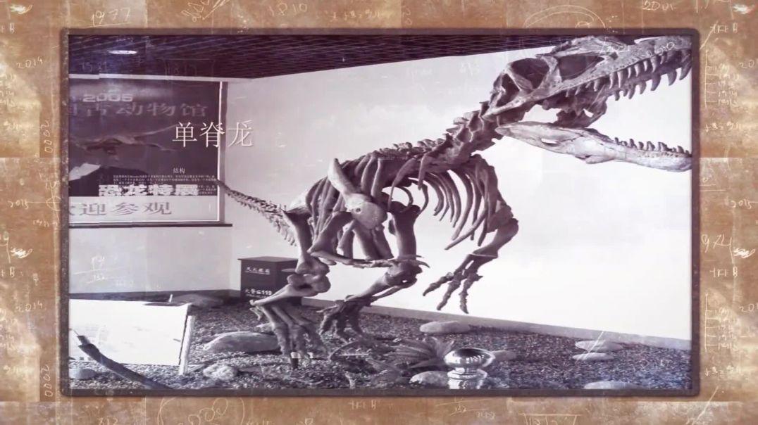 中国的恐龙(5)